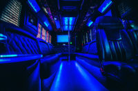 st pete party bus lights dance pole 21st birthday